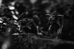 Who let the dogs out? (swansbill) Tags: dogs blackandwhite monochrome beasts monsters gamesworkshop ageofsigmar models wolves macro