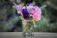 Sommerstrau (kathrin275) Tags: blumenstraus sommerstraus blumen flowers bunt bunchofflowers colorful glas glass tisch table pflanzen plants garten garden sommer summer straus blumenvase vase outdoor hbw