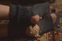 82/365 Cozy season (Adanethel) Tags: 365 365days 365project feet flowers dark shadows grain warm autumn cozy light shade