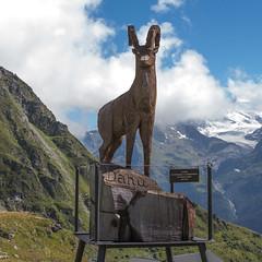 Dahu (MattLawrence) Tags: dahu sculpture valais summit mountain verbier urban myth switzerland