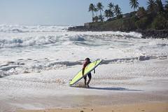 DSC05322 (neilreadhead) Tags: awt1 hawaii oahu waimeabay