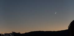 Mond, Venus-9