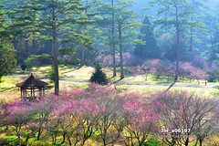 Jin_a06197 (Chen Liang Dao  hyperphoto) Tags:                vacation