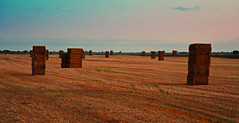 Hay Towers (Travis Pictures) Tags: evening peterborough lincolnshire deepingstnicholas deeping fenland thefens countryside rural farm agriculture southholland spalding a1175 england uk britain summer hay bales nikon d5200 photoshop