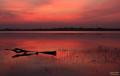 Amazing Sunset (Mani Roos) Tags: sonnenuntergang sunset see lake wasser water rot red himmel sky thailand thai buriram landschaft landscpae canoneos7dmarkii sigma1770mm28 maniroos huaitalat isaan autofocus