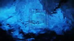 Kayak Rentals _ Paddleboard Rentals Johns Pass Maderia Beach Florida http___www.HubbardsMarina.com (Hubbards Marina) Tags: httpwwwhubbardsmarinacom kayak rentals paddleboards segways st petersburg fl tampa bay florida