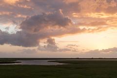 Solnedgang ved Korevlerne, Ellinge Lyng 2016 (Appaz Photography ) Tags: appazphotography denmark hjby hjbylyng hjbylyngstrand korevlerne odsherred sjlland solen solnedgang sun sunset