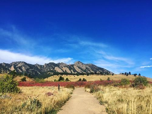 Photo - Alli Braus Fronzaglia- Mesa Trail