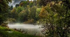 Brume sur l'Ain - 3 (Tra Te E Me (TTEM)) Tags: lumixfz1000 photoshop cameraraw ain rivire river jura franchecomt champagnole brume mist eau water paysage landscape nature automne arbres trees