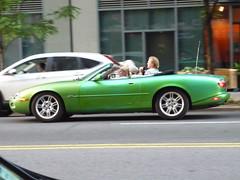 Jaguar XK (JLaw45) Tags: newyorkcity newyorkcar newyork ny nyc bigapple jaguar jag jaguarxk xk convertible jaguarconvertible europeancar europeanconvertible vehicle wheels britishcar englishcar english british eu europeanunionproduct import imported cabriolet softtop droptop luxury usa unitedstates