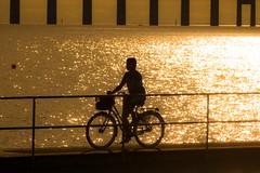 Bike (Infomastern) Tags: malm sibbarp bike bridge bro bruygga cykel dock hav mnniska people sea silhouette siluett water resundsbron
