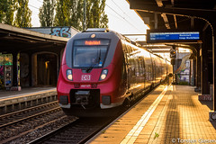 Potsdam-Charlottenhof_DB-Regio442-127+442-129_19092016 (giesen.torsten) Tags: nikon nikond810 potsdam potsdamcharlottenhof talent2 bombardier