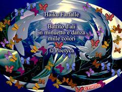 Farfalla (Poetyca) Tags: featured image sfumature poetiche poesia
