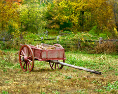 Little Red (Chancy Rendezvous) Tags: little red wagon cart farrn harvest autumn fall foliage trump chancyrendezvous