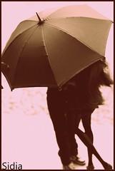 A-Z Challenge : R - Rain Gear (Sidia09) Tags: azchallenge challenger challenges challenget umbrella fashionroyalty