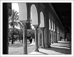 Patio de Los Naranjos- Crdoba (Lourdes S.C.) Tags: patio patiosandaluces patiodelosnaranjos mezquita crdoba andaluca arcos