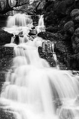 DSC07254 (Ronan_C) Tags: sonya6000 birksofaberfeldy waterfall water autumn wet forest perthshire dark damp october fall