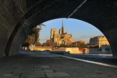 Notre Dame  l'heure dore (photo.amateur78) Tags: notredamedeparis heuredore goldenhour paris