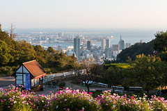 View of Kobe from Kobe Nunobiki Herb Gardens (Winston Tan Photography) Tags: autumn fall japan skyline cityscape sigma kobe canoneos70d canon70d sigma1835mmf18 kobenunobikiherbgardens