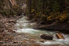 Johnston Canyon, Banff National Park (Alberta) (Anna & Oskar) Tags: travel viaje canada canon landscape paisaje can alberta massive canadianrockies johnstoncanyon 1dx montaasrocosas 5dmarkii kananaskiscountryclaresholm