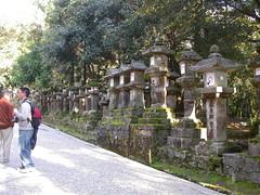 DSCN2579 stone lanterns, entrance to Kasuga-taisha, Nara, Japan  (johnjennings995) Tags: japan stone shrine lantern nara stonelantern kasugataisha kasugagrandshrine