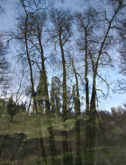 Climbing Depths (andressolo) Tags: trees distortion reflection tree water ro reflections river distorted reflected reflect reflejo current reflejos corriente distortions