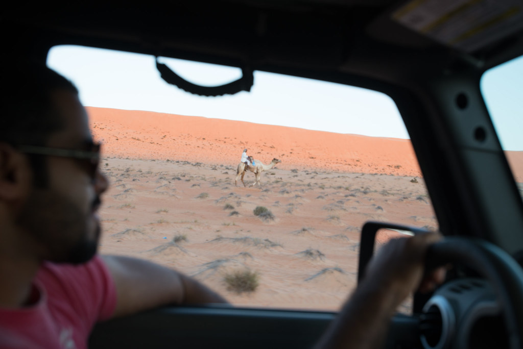 Cruising with Camels