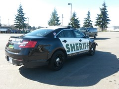 King County Sheriff's Office Ford Police Interceptor Sedan (RFE01) Tags: county ford sedan washington king police sheriff interceptor