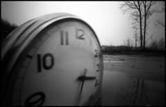 abstract (Roberto Messina photography) Tags: bw italy analog hc110 pinhole fim analogue february zeroimage zero69 2015 dilb