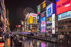 Rainy night in Osaka. ( www.ethanleephoto.com) Tags: city travel light urban reflection water japan night river canal nikon cityscape shift  osaka 24mm tilt    f35 tiltshift pce   d810 totonbori
