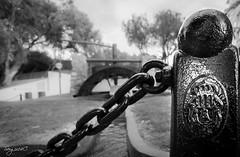 Guardamar del Segura (sergio14c) Tags: blackandwhite blancoynegro monument water canon monumento wide molino alicante cadena granangular escudo simbolo emblema guardamardelsegura canon600d