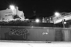 Sheep (WelcomeBackOtter) Tags: sanfrancisco nightphotography blackandwhite graffiti streetphotography sfgraffiti sutrotower bayareagraffiti joshualacayophotography