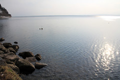 (Yorozuna / ) Tags: lake reflection japan lakefront shiga biwako watersurface  makino  takashima lakebiwa        lakesurface      kaidu  kaiduosaki