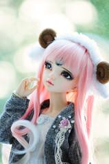 Little sheepy girl :) (Athena Roseanna Tse) Tags: doll lotus bjd fairyland abjd luka balljointeddoll mnf minifee