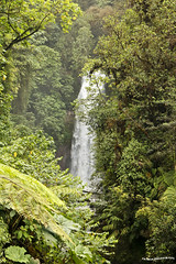 Catarata - Waterfall (pniselba) Tags: rio forest river waterfall costarica selva bosque jungle catarata jungla lapazwaterfallgarden
