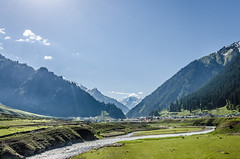 Sonmarg Valley - Kashmir, India (Parth_Joshi) Tags: trees india snow mountains green nature grass sunrise river landscape kashmir sonmarg beautifulindia nikond7000