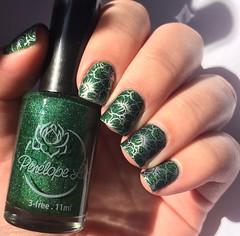Veratrum (Francinie Helvadjian) Tags: verde green holographic esmalte penlopeluz veratrum nailpolish