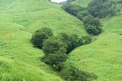 18Tonomine Highland (anglo10) Tags:   japan field