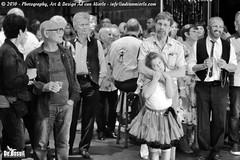 2016 Bosuil-Het publiek bij de 30th Anniversary Steady State 1-ZW
