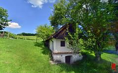 Phot.Austria.Csaterberg.Kellerstckl.01.061622.9216.jpg (frankartculinary) Tags: nikon d800 d300 d200 f2 f3 f4 coolpix frankartculinaryyahoode austria sterreich autriche burgenland kellerstckl tatzmannsdorf golf vineyards weinberge vignoble vigneto viedo wellness studfarm munich solar