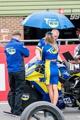 BSB Snetterton 2016 - Team WD-40 Kawasaki grid girl (Sacha Alleyne) Tags: snetterton british superbikes championship pirelli motorbike motorcycle moto motorsport racing babe brunette grid umbrella pit promo promotional girl 2016