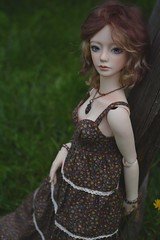 Holiday in the countryside (hoe-nir) Tags: zaoll luv dollmore bjd