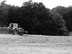 evening plow (markus_rgb) Tags: traktor feld acker pflug pflgen abend