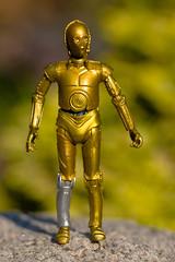 Human Cyborg Relations (atari_warlord) Tags: 375 actionfigure c3po droid hasbro starwars