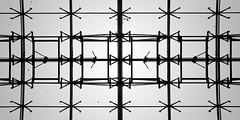 glass roof 1641 (s.alt) Tags: glassroof glass roof steel railwaystation frankfurt airport konstruktion stahlkonstruktion stahl minimal struktur silhouette blackwhite bw schwarzweiss sw pattern minimalism symmetrie symmetry