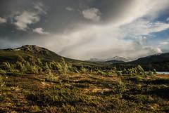 Jotunheimen, Norway (Karol Majewski) Tags: jotunheimen norwa norge norwegia landscape nature krajobraz natura gry mountains fjellet slope stok oppland vg wander wanderlust gjendesheim maurvangen sjodalen clouds chmury