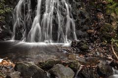 still waters (dingerd11) Tags: streams longexposure tarnhows