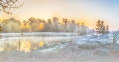 sunset with fog (t.boelaars) Tags: sunset bomen mist panoramafoto reflection water weerspiegeling zonlicht zonsopkomst fog trees