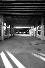 Railway Station (Lonely Furrow) Tags: railroad station ellisisland
