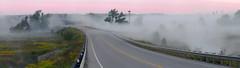 Osprey sentinal (virgil martin) Tags: panorama dawn landscape river mist morningmist osprey wildflowers grandriver inverhaugh wellingtoncounty ontario canada olympusomdem5 panasoniclumix100300mm oloneo microsoftice gimp